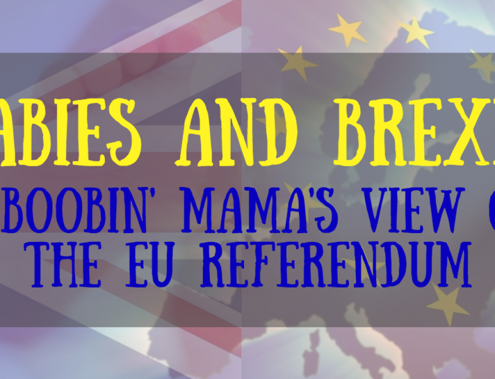 Babies and Brexit: A Boobin' Mama's View On The EU Referendum