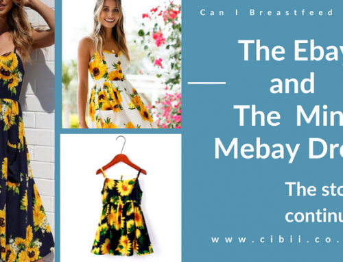 The Ebay and The Mini Mebay Dress