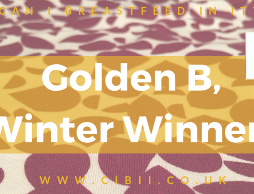 Golden B Winter Winner