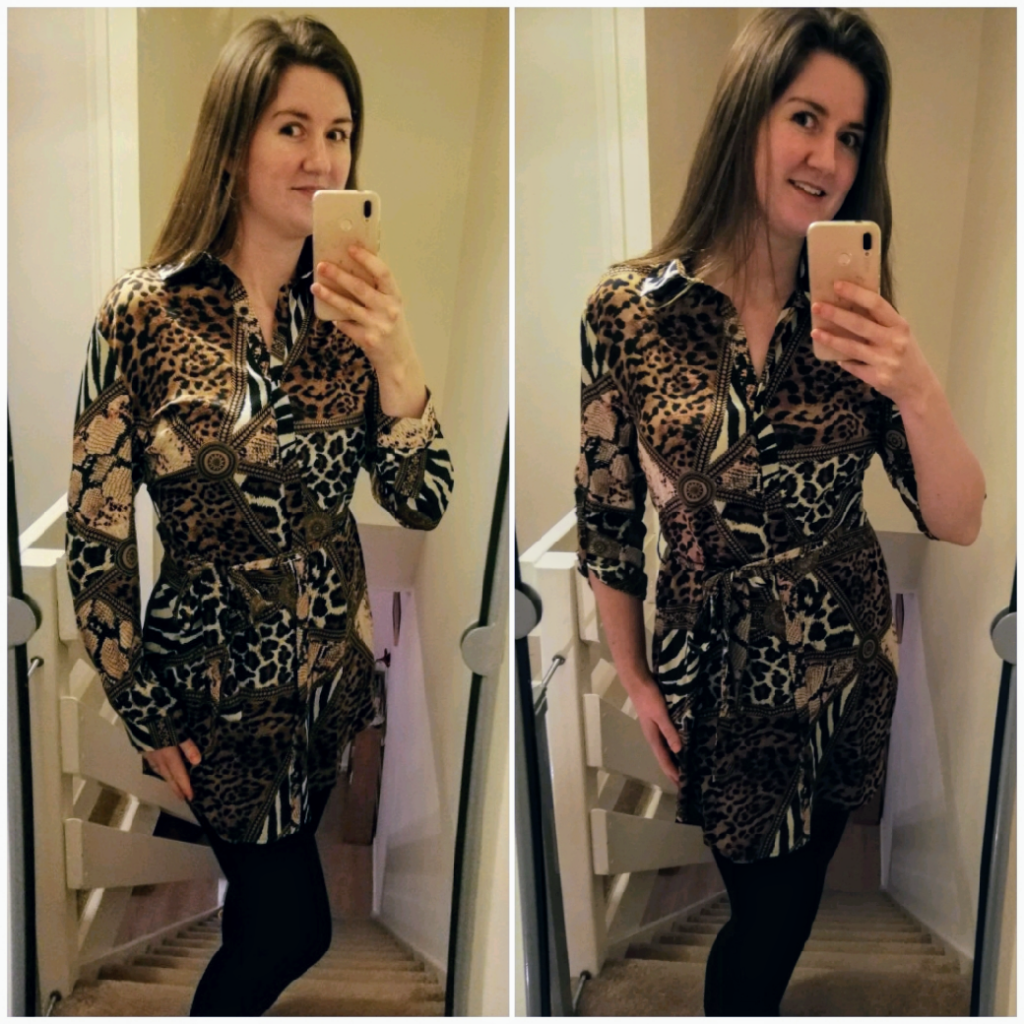 1 Animal Print Shirt Dress